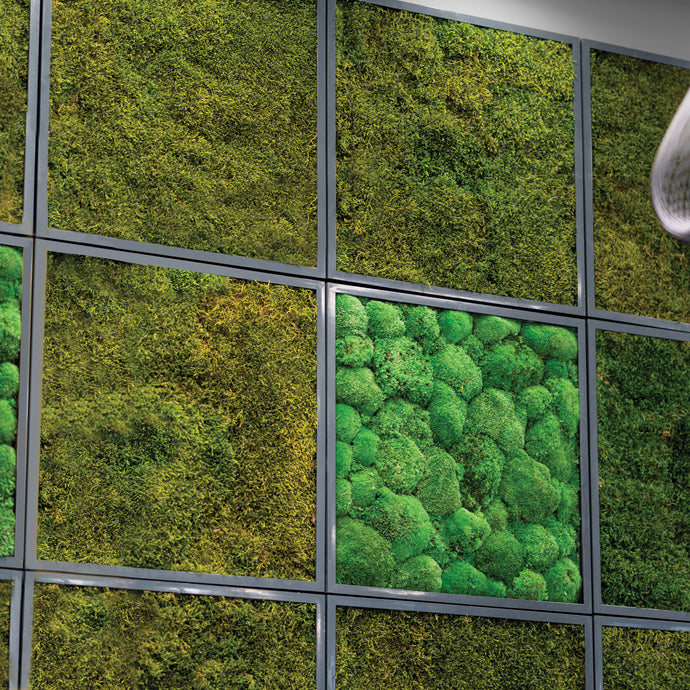 Acoustic sound-absorption reindeer and pole moss wall art