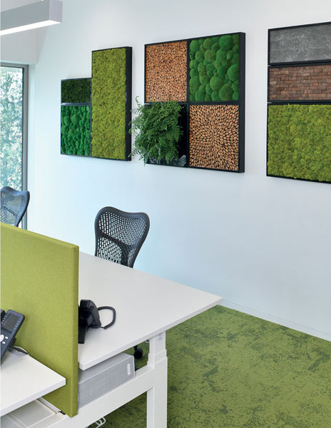 24x24 Moss Wall Art installation of Upcycled Mangium Tree Leaf Burst Pattern with Vivid Green Pole Moss in black frames
