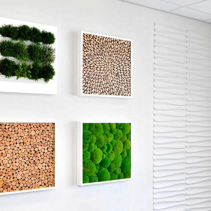 Bring the benefits of nature indoors with our sustainably harvested moss and bark inserts for your green wall art.