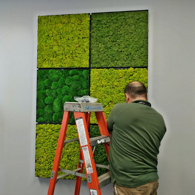 Easily Install moss wall frames and bring the benefits of nature inside.