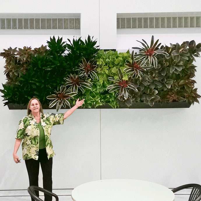 Use multiple plantups green wall kits fit a larger area.