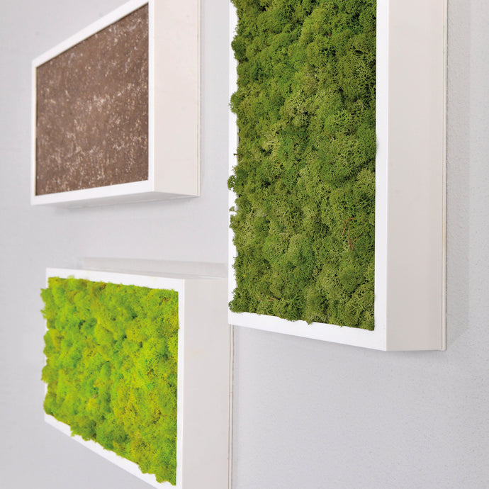 Combine moss wall panels with stone or bark panels to create your own dramatic statement with nature.