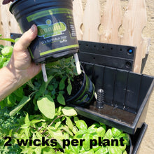 Our sipper wicks allow the living green walls operate without plumbing or drainage.