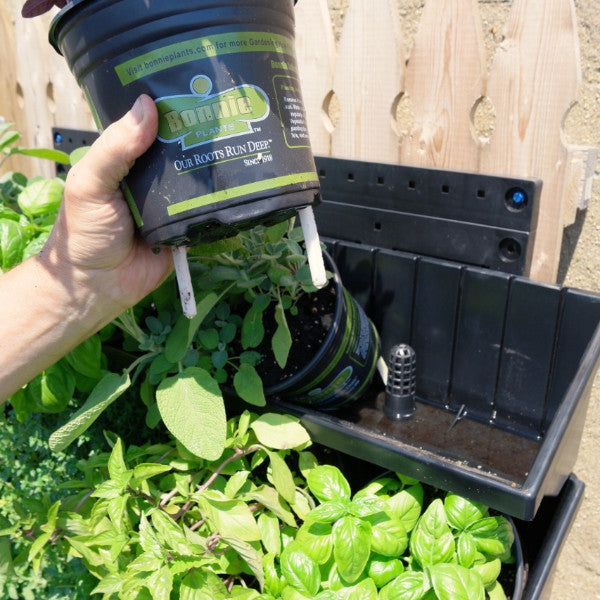 "GW 4""-Green Wall Vertical Planter Kit for 4"" grow pots."