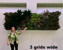 "This is an installation of 3 grids  using our Green Wall Vertical Planter Kit for 8"" Grow Pots."