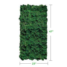 forest-green Moss Wall Art Panel (No Frame)