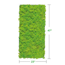 lime-green Moss Wall Art Panel (No Frame)