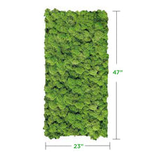 medium-green Moss Wall Art Panel (No Frame)