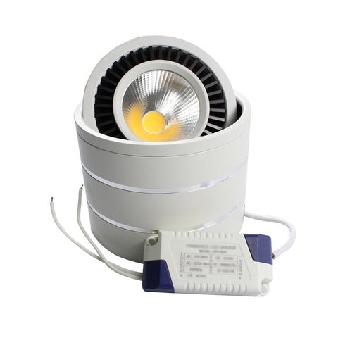 Surface Mouted Led Cob Downlight 5W/7W/9W/20W Led Lamp Ac85265V Ceiling Spot Light W/ Led Driver White/Warm White