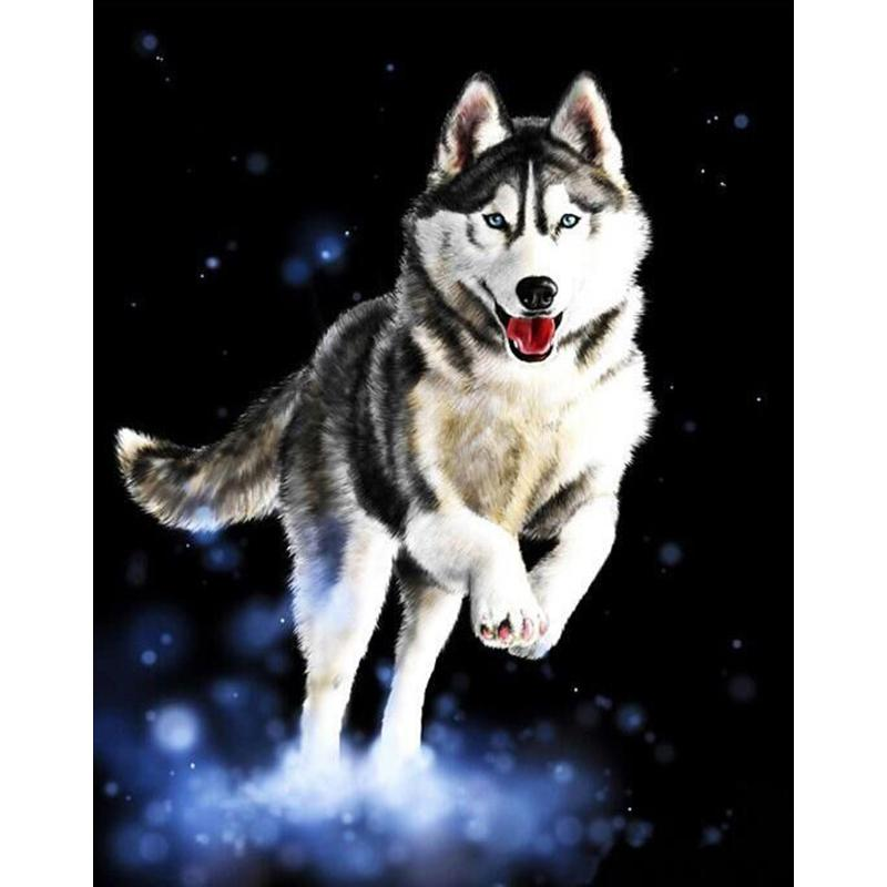 $13.38- Frameless Huskies Animals Diy Painting By Numbers Hand Painted Oil Painting Modern Wall Art Picture For Home Artwork 40X50Cm