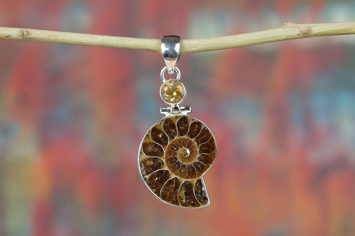 Charming Ammonite Gemstone & Pure 925 Sterling Silver Pendant