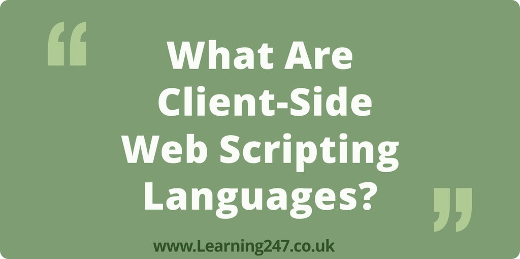 What Are Client-Side Web Scripting Languages?