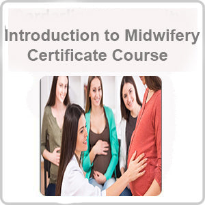 Introduction to Midwifery Certificate Course