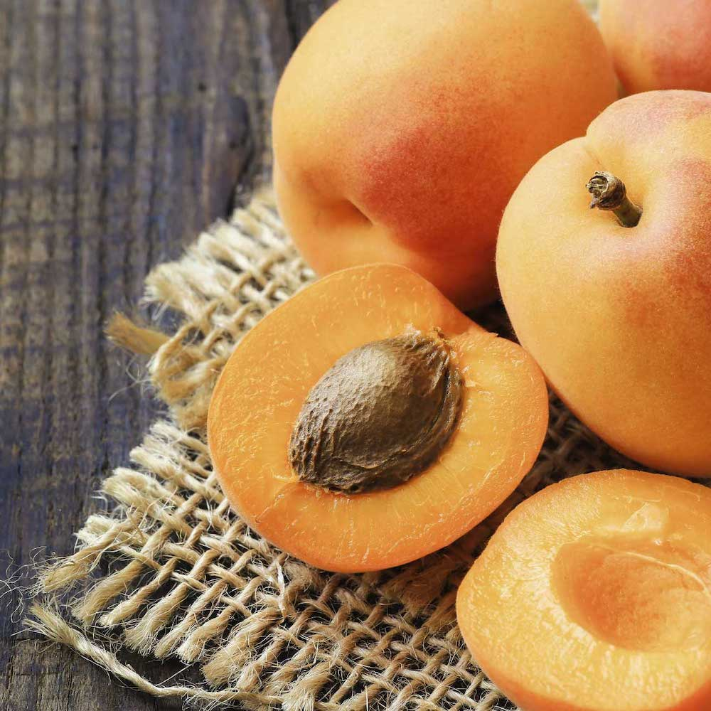 Organic Apricot Kernel Oil by Conscious Skincare