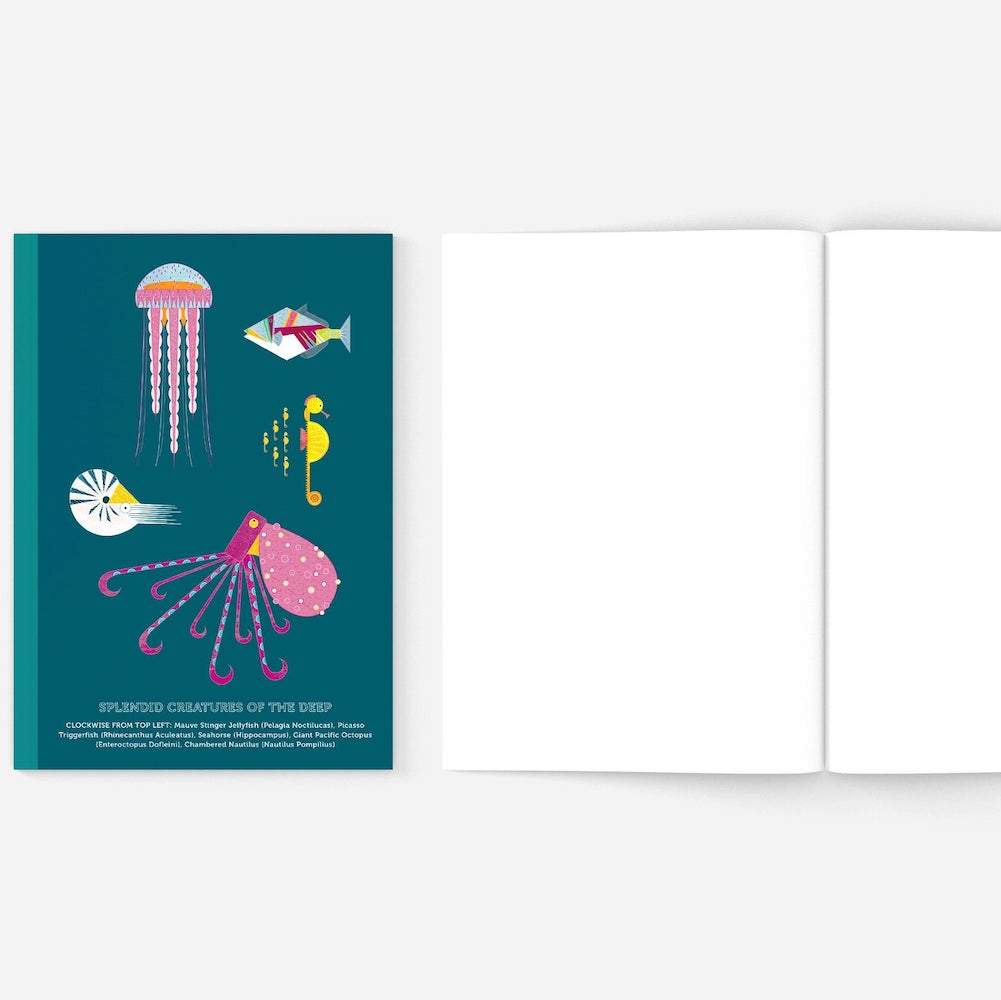 Splendid Sea Creatures Recycled A5 Teal Notebook
