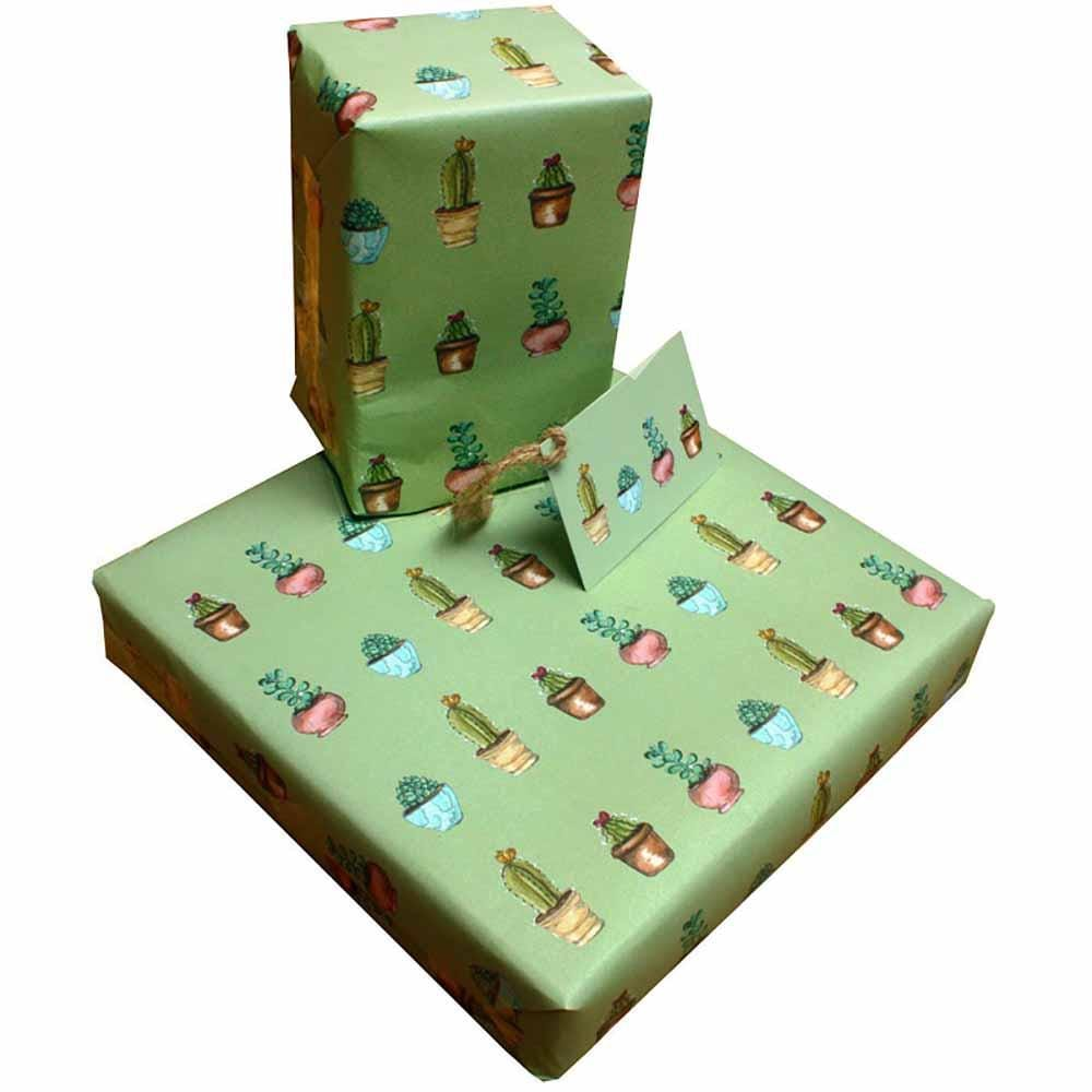 Eco Friendly Recycled Wrapping Paper & Gift Tag - Cactus Re-wrapped &Keep