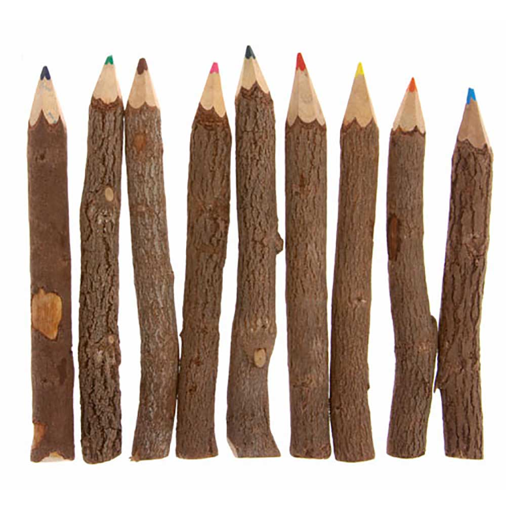 Set of 10 Twig Colouring Pencils &Keep