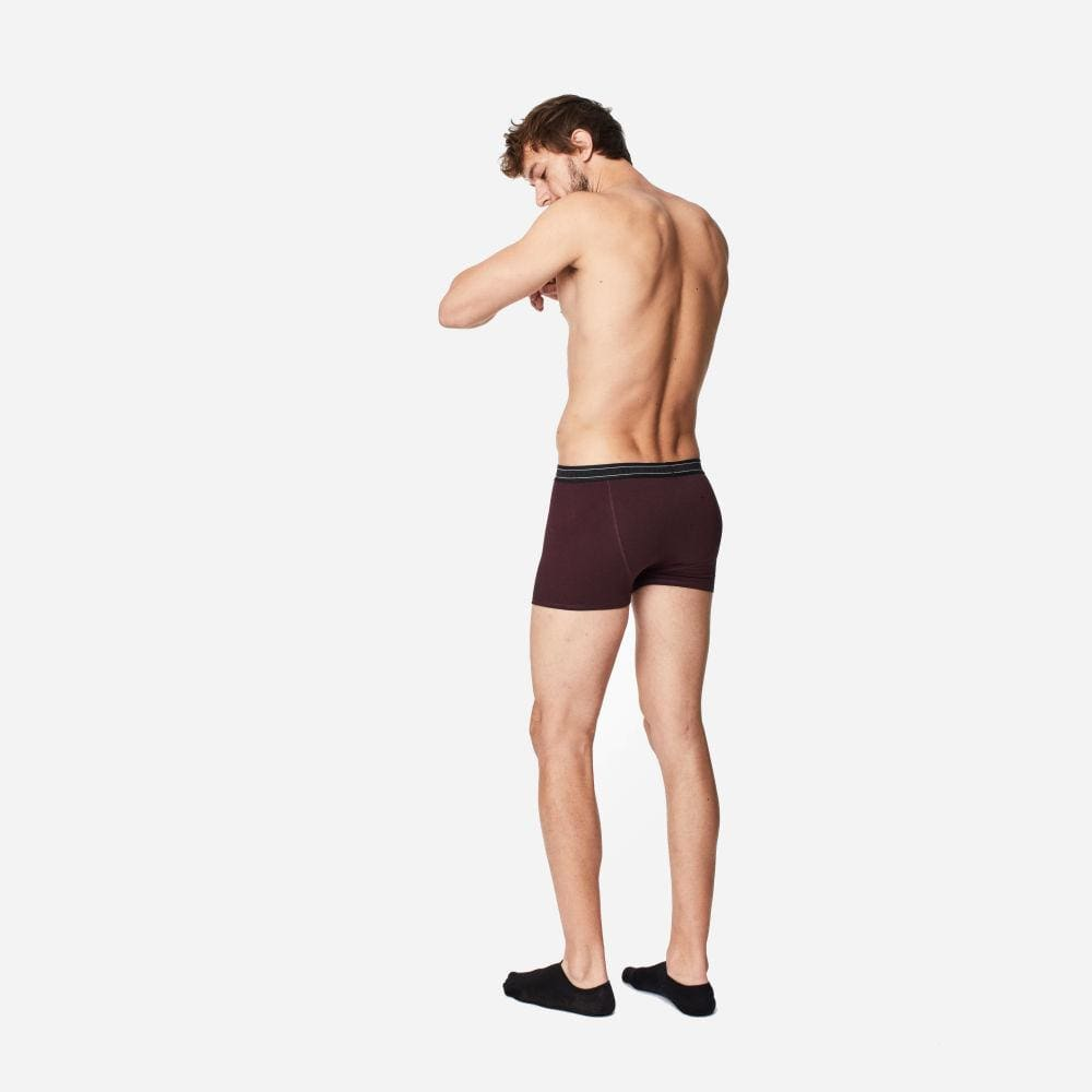 Thought Mens Bamboo Arthur Boxers By Thought - Aubergine &keep
