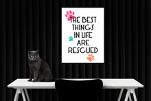 """The Best Things In Life Are Rescued"" A4 Print"