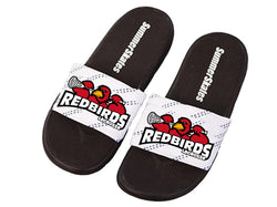Newmarket Redbirds SummerSkates Slides