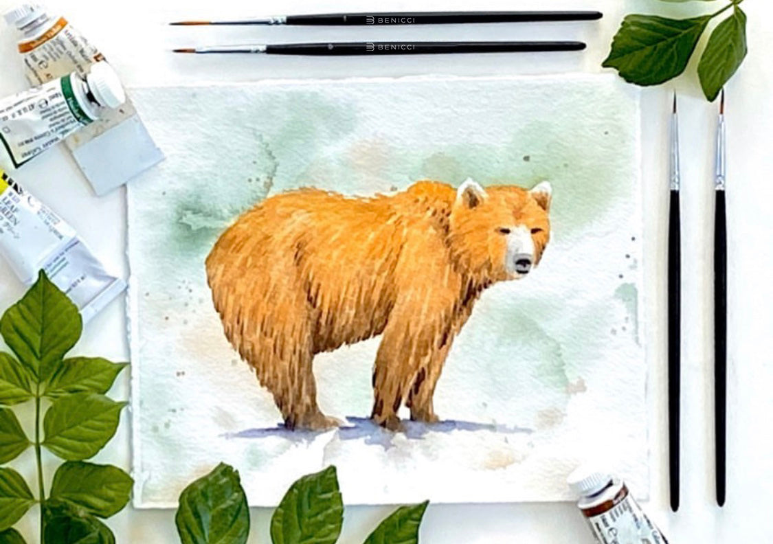 How to Draw a Bear. Step-by-Step Watercolor Instruction