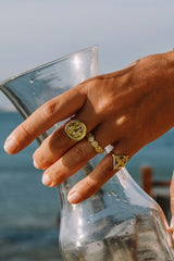 Paradise coin ring gold