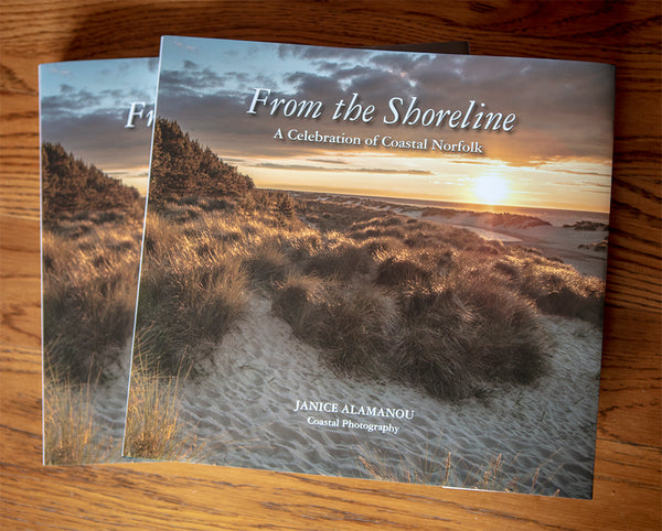 From the Shoreline - NEW Book by Janice Alamanou - in the Gallery