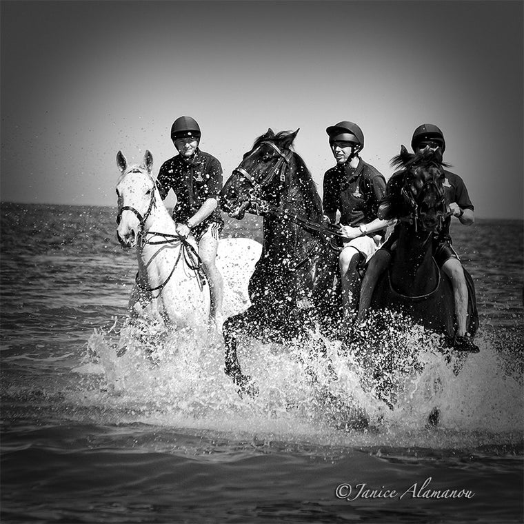 LH070915bw Horses in the Surf