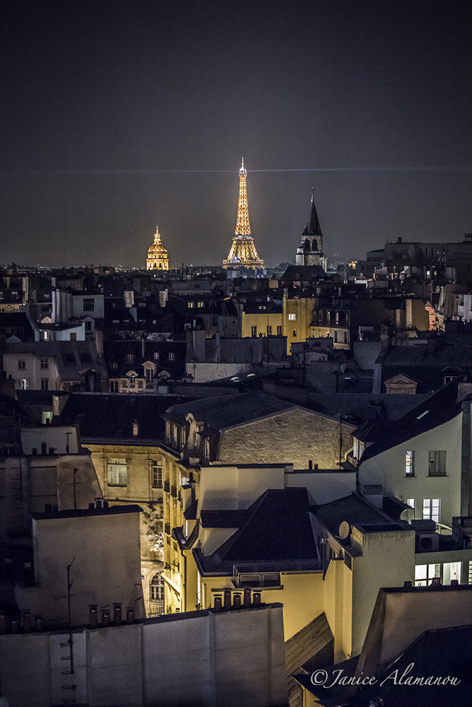 Paris from the Rooftops 1
