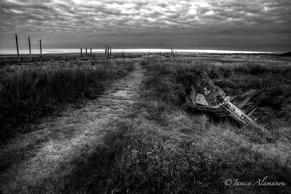 L332314bw Bare Bones on Salt Marsh