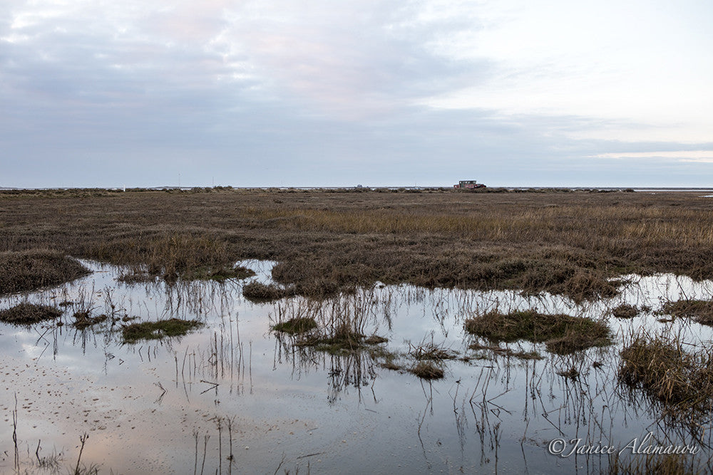 L481316 Salt Marsh Tides