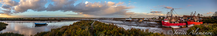 L494718pan Saltmarsh Sundown