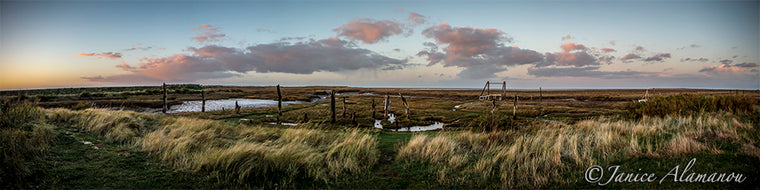 L504718pan Sundown at Thornham Sticks