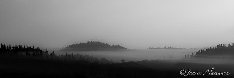 L932112pan Misty Morning