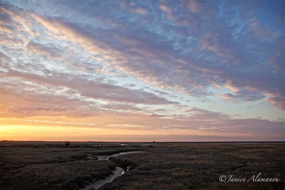 L946216 Saltmarsh Sundown