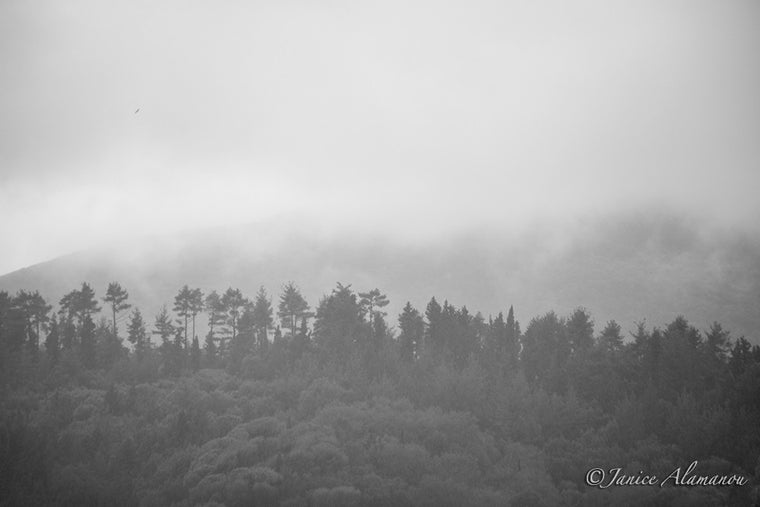 L960917 Misty Mountains