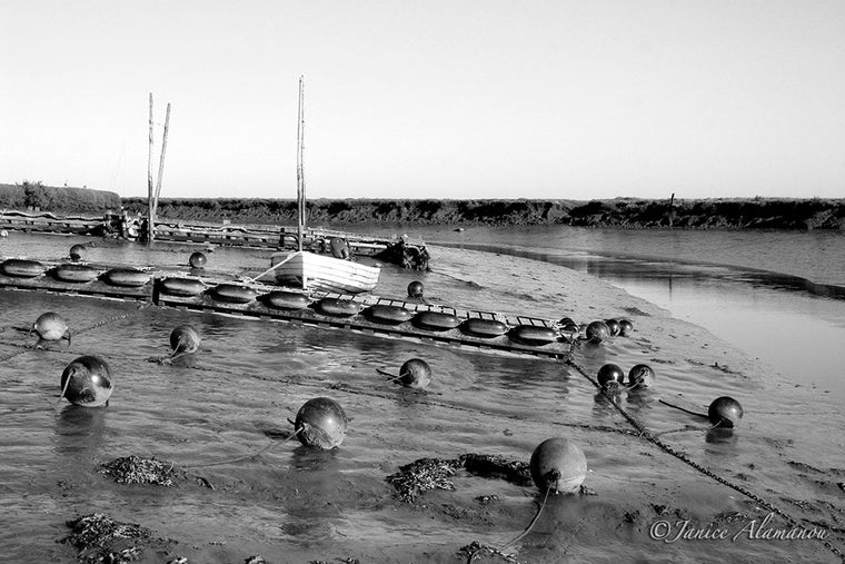 LB91bw Waiting for the Tide