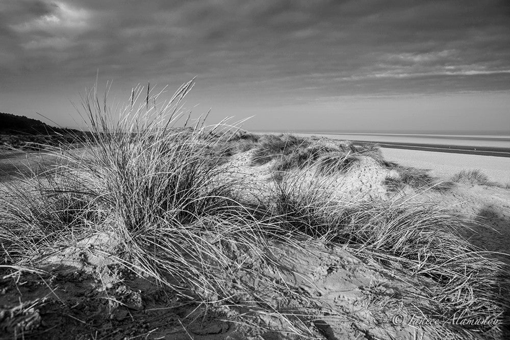 LBc020217bw Dunes to Horizon