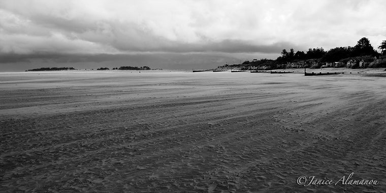 LBc036412bw Blowing Beach