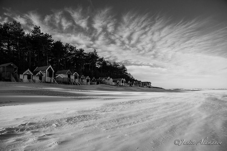 LBc528219bw Sand Blown Huts