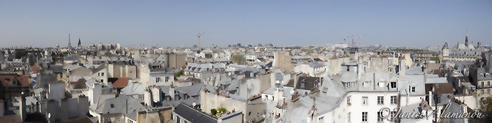Paris from the Rooftops 4