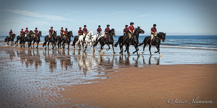 LH227715 Cavalry gallop the shores