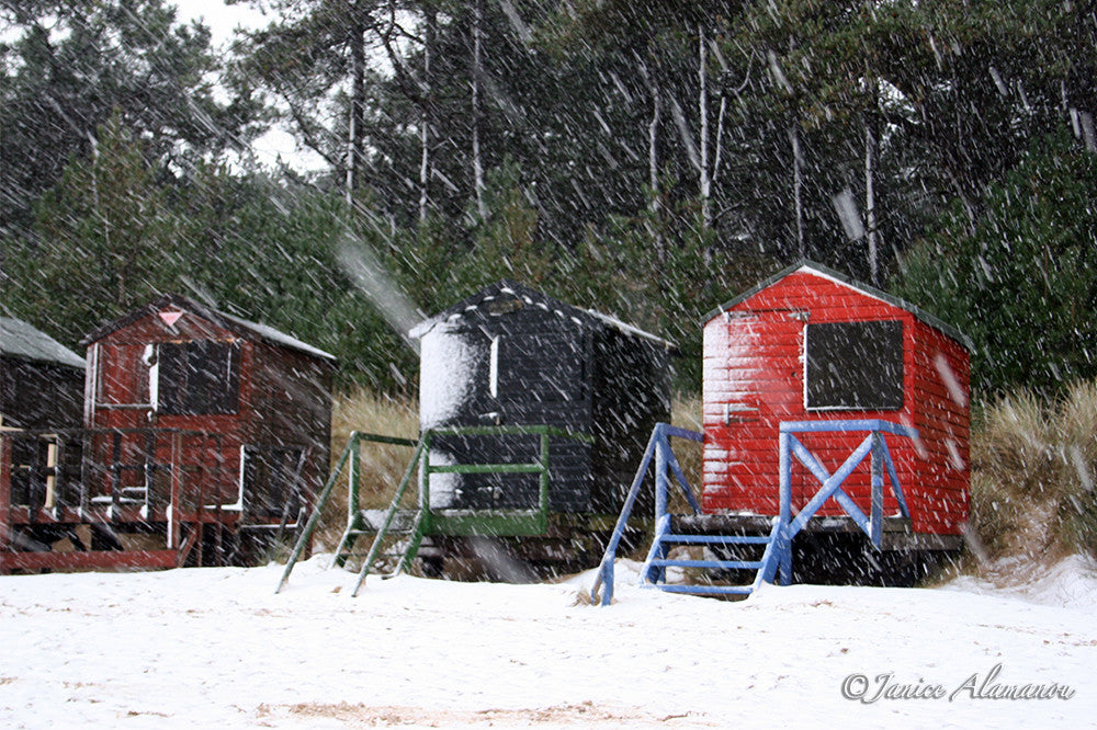 LSn19 - Snow Storm & Beach Huts. Wells, Norfolk