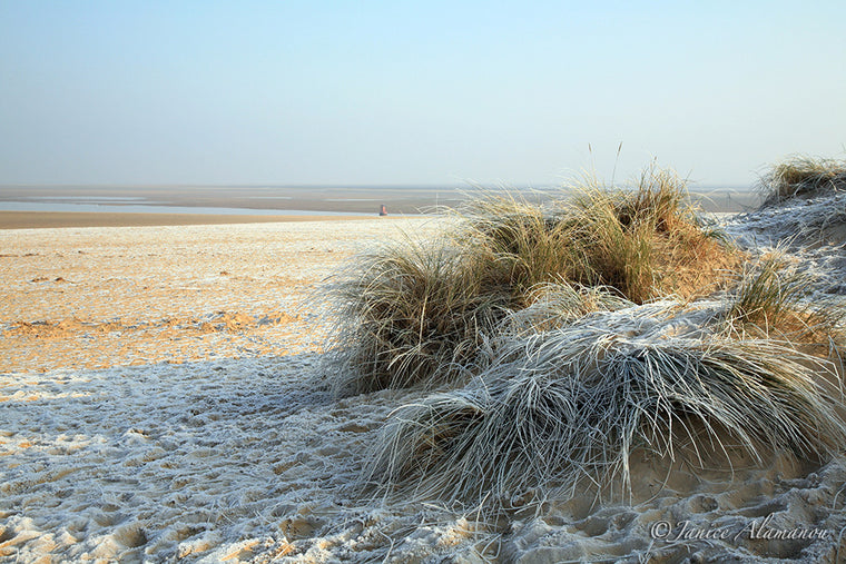 LSn38 Frosty Dune. Wells-next-the-Sea