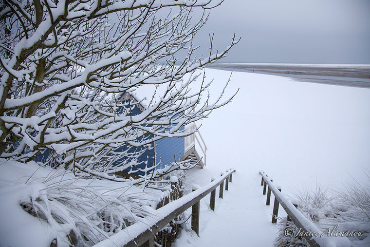 LSn763512 Winter Blue Beach Hut