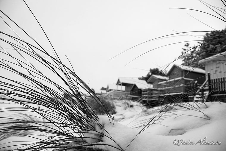 LSn780112bw Marram to Snow covered Beach Huts