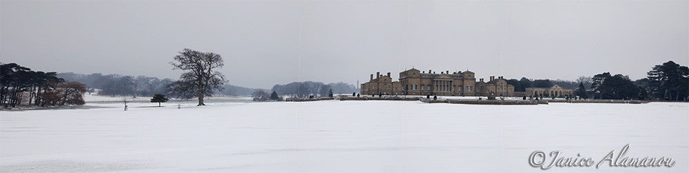PN787512pan Snow in Holkham Grounds