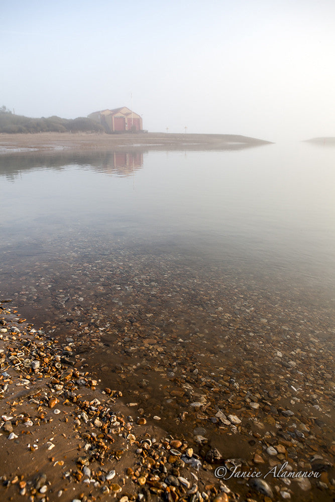 PN979612 Shallow in the Mists
