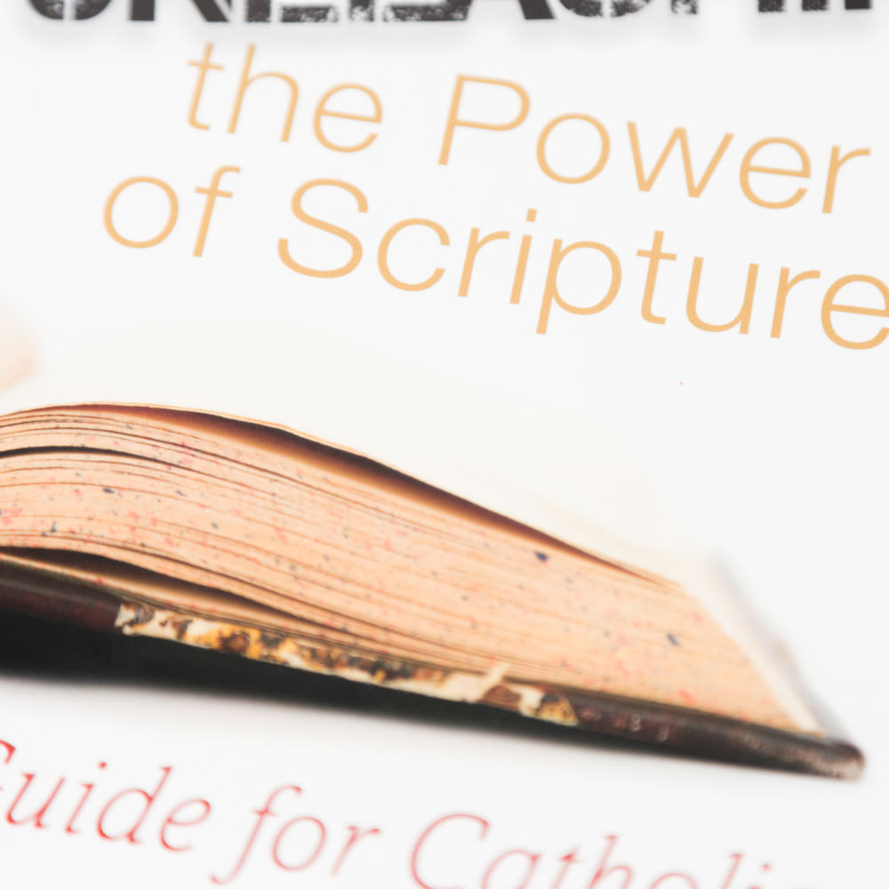 Unleashing the Power of Scripture: A Guide for Catholics