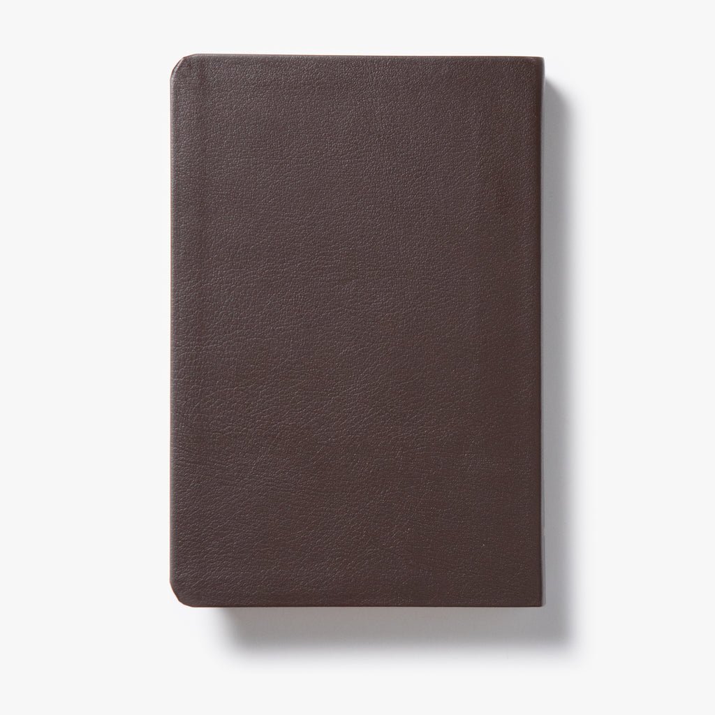 Catholic Teen Bible (Leather Bound)